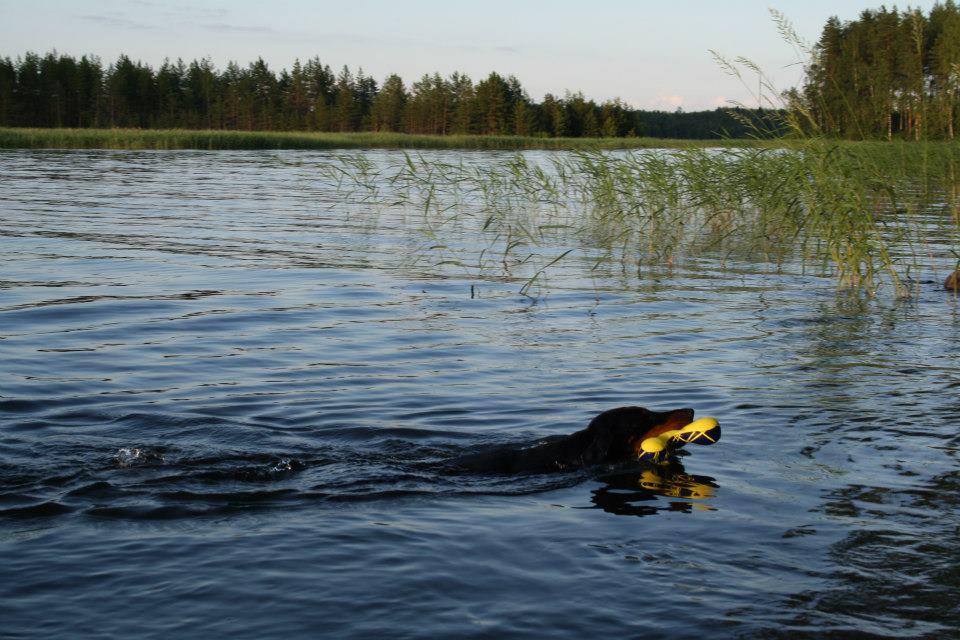 Bria swimming summer 2012